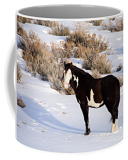Wild Horse Stallion Coffee Mug
