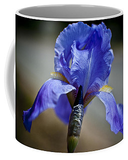 Wild Iris Coffee Mug by Ron White