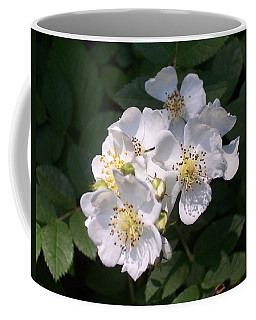 Wild Rose Coffee Mug by William Tanneberger