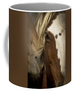 Coffee Mug featuring the photograph Wild Mustangs Of New Mexico 32 by Catherine Sobredo