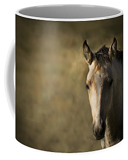 Coffee Mug featuring the photograph Wild Mustangs Of New Mexico 35 by Catherine Sobredo
