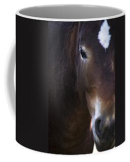 Wild Mustangs Of New Mexico 42 Coffee Mug