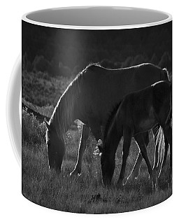 Coffee Mug featuring the photograph Wild Mustangs Of New Mexico 7 by Catherine Sobredo
