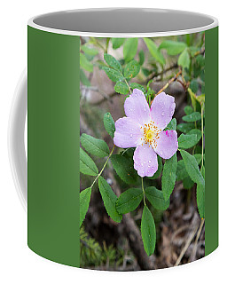 Coffee Mug featuring the photograph Wild Gentian by Michael Chatt