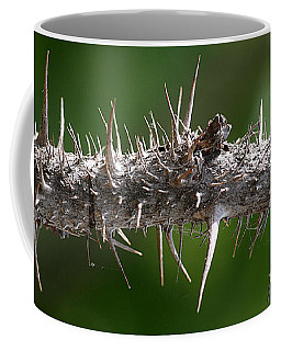 Coffee Mug featuring the photograph Wild Rose Thorns by William Selander