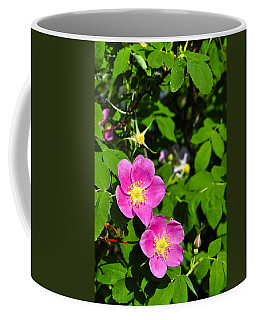 Coffee Mug featuring the photograph Wild Roses by Cathy Mahnke