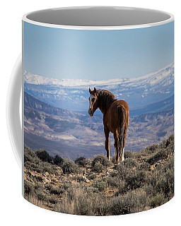 Wild Stallion Of Sand Wash Basin Coffee Mug
