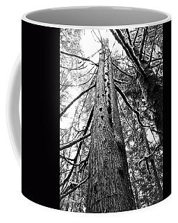 Coffee Mug featuring the photograph Wild Things Hotel by Adria Trail