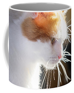 Wild Whiskers Coffee Mug