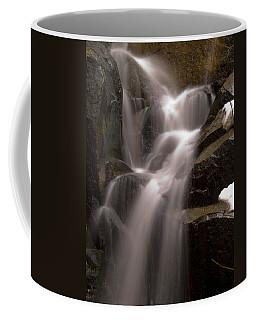 Wildcat Falls Coffee Mug by Bill Gallagher