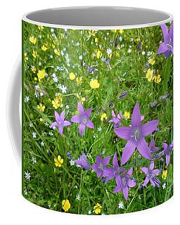 Coffee Mug featuring the photograph Wildflower Garden by Martin Howard