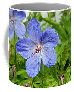 Coffee Mug featuring the photograph Wildflower by Rod Wiens