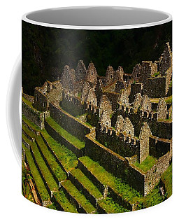 Winay Wayna Coffee Mug