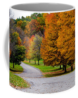 Coffee Mug featuring the photograph Winding Road by William Norton