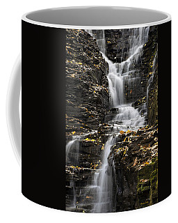Winding Waterfall Coffee Mug