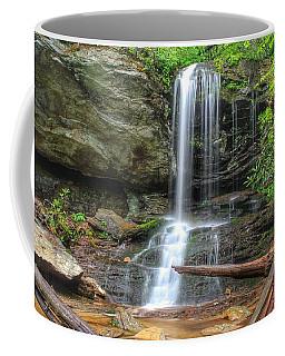 Window Falls Coffee Mug
