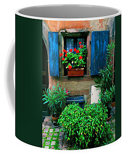 Windows And Doors 2 Coffee Mug