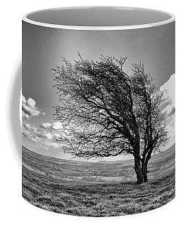 Coffee Mug featuring the photograph Windswept Tree On Knapp Hill by Paul Gulliver