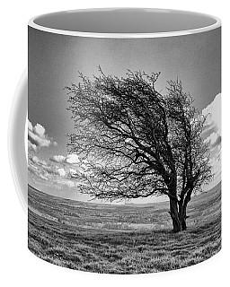 Windswept Tree On Knapp Hill Coffee Mug