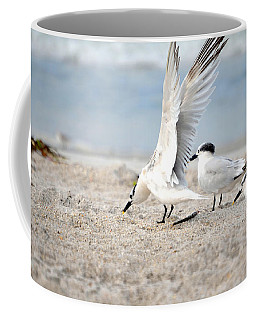 Wing Span Coffee Mug