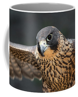 Winged Portrait Coffee Mug by Dale Kincaid