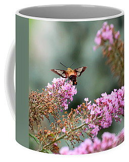 Coffee Mug featuring the photograph Wings In The Flowers by Kerri Farley