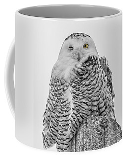 Winking Snowy Owl Black And White Coffee Mug