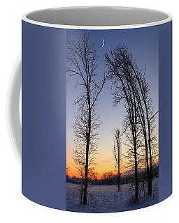 Winter At Dusk Coffee Mug