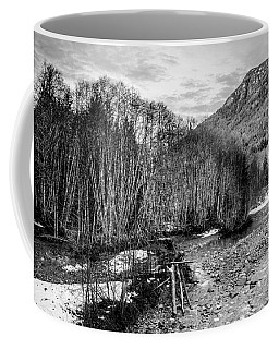 Winter Backroads Englishman River Coffee Mug