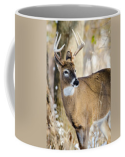 Coffee Mug featuring the photograph Winter Buck by Steven Santamour