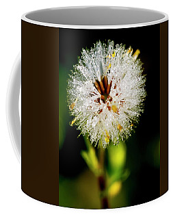 Coffee Mug featuring the photograph Winter Dandelion by Pedro Cardona