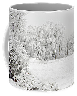 Coffee Mug featuring the photograph Winter Doe by Mary Jo Allen