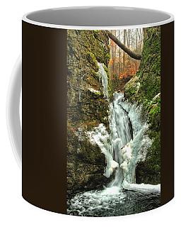 Winter Falls Coffee Mug by Karol Livote