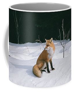Coffee Mug featuring the photograph Winter Fox by David Porteus