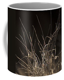 Coffee Mug featuring the photograph Winter Grass 2 by Yulia Kazansky