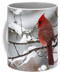 Winter In Red Coffee Mug