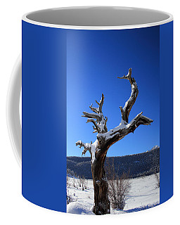 Winter In The Rockies Coffee Mug