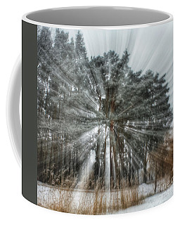 Winter Light In A Forest Coffee Mug
