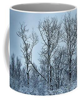Winter Morning View Coffee Mug
