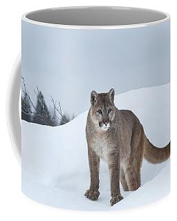 Winter Mountain Lion  Coffee Mug