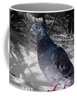 Coffee Mug featuring the photograph Winter Pigeon by Nina Silver
