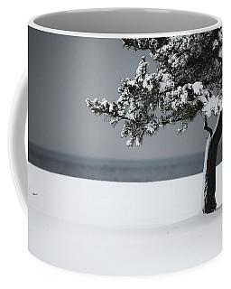 Winter Quiet Coffee Mug by Karol Livote