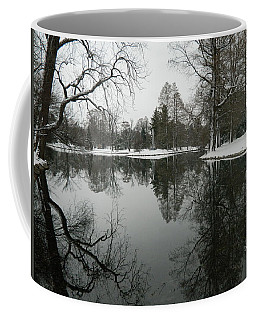 Coffee Mug featuring the photograph Winter Reflections 2 by Kathy Barney