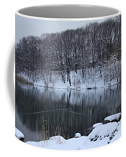 Coffee Mug featuring the photograph Winter Reflections by Dora Sofia Caputo Photographic Art and Design