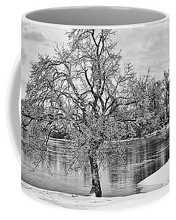 Winter Tree At The Park  B/w Coffee Mug by Greg Jackson