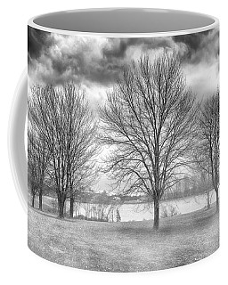 Coffee Mug featuring the photograph Winter Trees by Howard Salmon