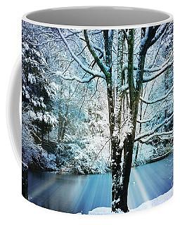 Coffee Mug featuring the photograph Winter Wonderland by Judy Palkimas