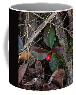 Wintergreen Coffee Mug by Mim White