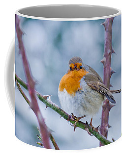 Winters Here Coffee Mug