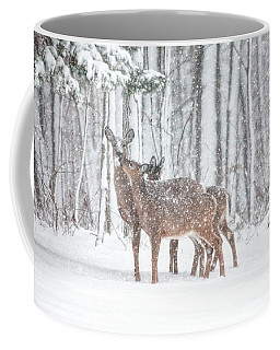 Winters Love Coffee Mug